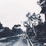 奥多摩街道